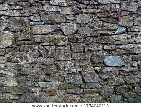 Eski taş duvar yosun yeşil doku inşaat Stok fotoğraf © elxeneize