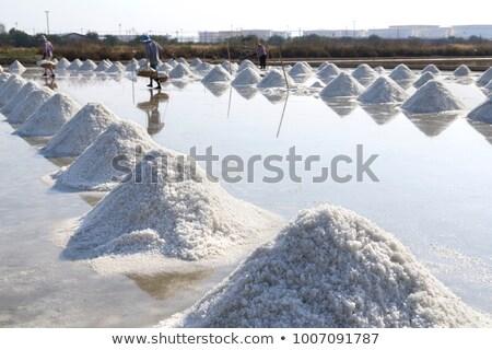 nátrium · nagy · köteg · frissen · só · szett - stock fotó © fogen