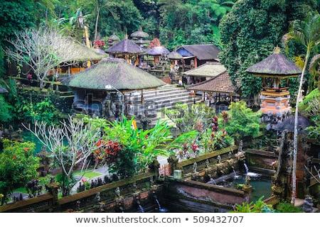 temple gunung kawi Stock photo © njaj