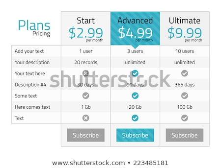 modern pricing table with turquoise recommended option stock photo © liliwhite