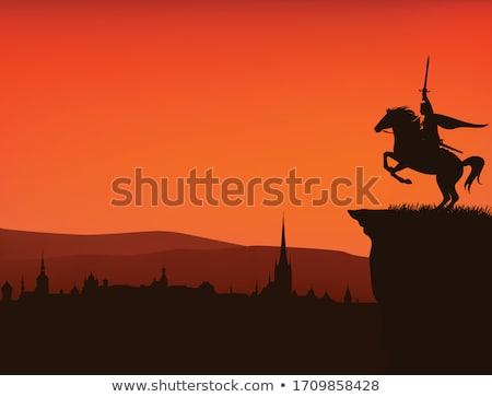 War horse Stock photo © Dazdraperma