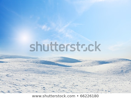 зима пейзаж снега небе природы Сток-фото © olandsfokus