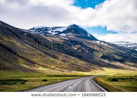 живописный мнение дороги Исландия ведущий известный Сток-фото © 1Tomm
