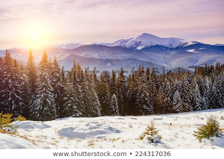 snowy mountains in clouds and sunlight sky stock photo © bsani