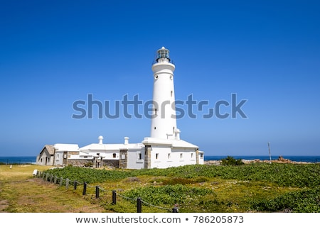 Seal Point Lighthouse in Cape St. Francis, South Africa Stock photo © dirkr