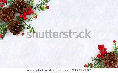 Stock photo: Fir-tree Branch Covered with Snow. Christmas Background