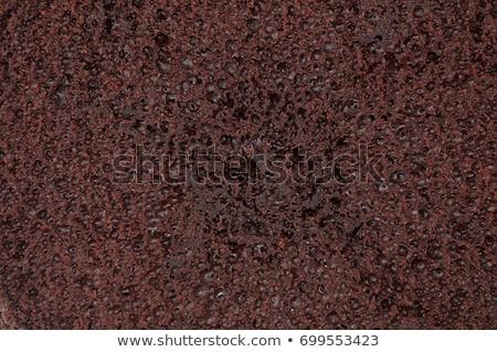 Chocolate Cake texture Stock photo © tangducminh