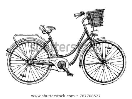 Stock fotó: Biciklik · vektor · illusztrációk · egyszerű · izolált · fehér