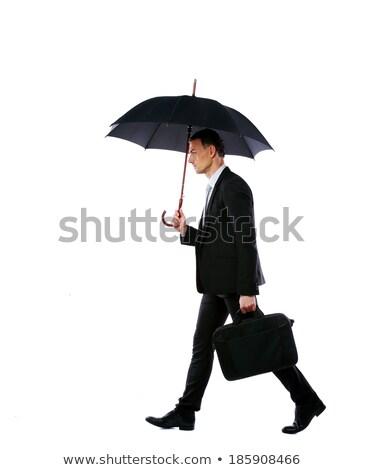 ходьбе · дождь · вид · сзади · пару · зонтик - Сток-фото © deandrobot