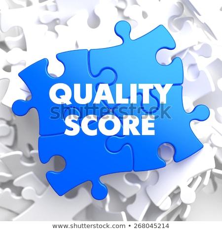 Qualität Punktzahl blau Puzzle weiß Management Stock foto © tashatuvango