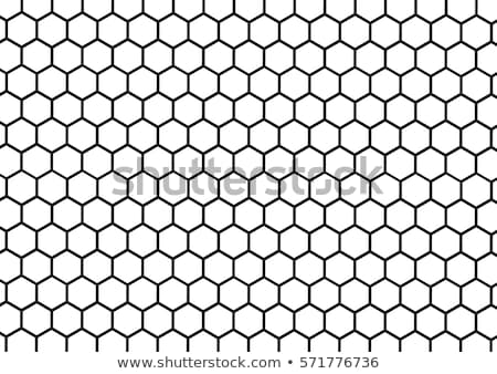 honeycomb pattern stock photo © kovacevic