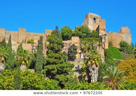 дворец малага Испания детали украшенный интерьер Сток-фото © CaptureLight