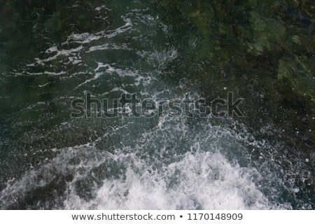 Sea waves rolling on shore Stock photo © dariazu