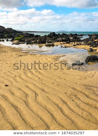 Beach on tropical island. Clear blue water, sand, bush.  Stock photo © master1305
