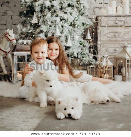 Karácsonyfa fehér fal egyszerűsített drót projektek Stock fotó © nito
