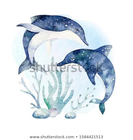 conjunto · aquarela · artístico · vetor · ilustrações - foto stock © mamziolzi