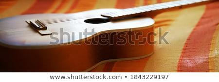 véres · gitár · grunge - stock fotó © lunamarina