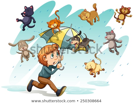 An idiom showing a rain with animals Stock photo © bluering