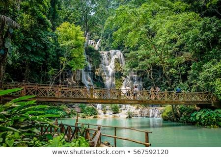 Wody spadek Laos wodospad piękna popularny Zdjęcia stock © jeayesy