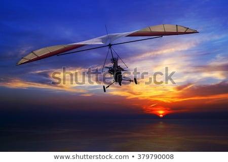 飛行 アイコン 空 男 スポーツ ストックフォト © Twinkieartcat