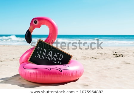Pink flamingos in summer day Stock photo © Aikon