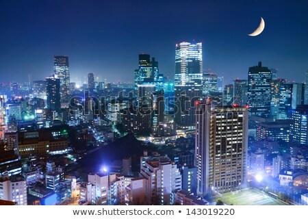 City · Lights · ночь · декораций · стены · город · пейзаж - Сток-фото © rastudio