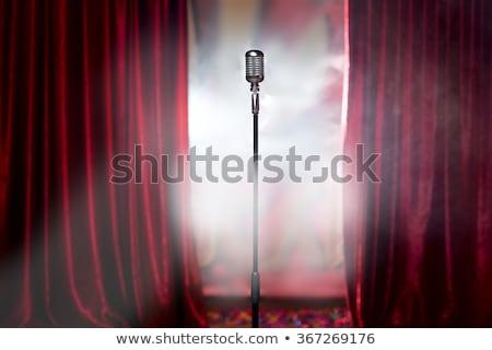 discurso · imagen · altos · líder · colegas - foto stock © pressmaster