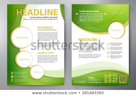 abstract green curve shape business brochure leaflet design in a Stock photo © SArts