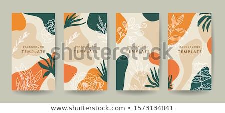 аннотация органический стиль минимальный шаблон фон Сток-фото © SArts