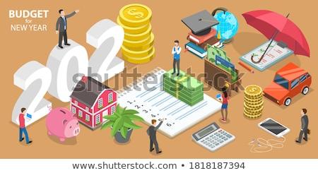 költségvetés · tervez · illusztráció · vonal · terv · grafikonok - stock fotó © kali