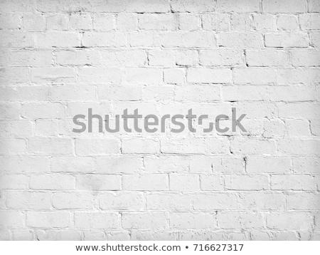 Brick wall building facade, urban street backdrop Stock photo © stevanovicigor
