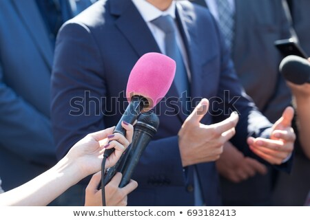 Press interview with businessman or politician Stock photo © wellphoto