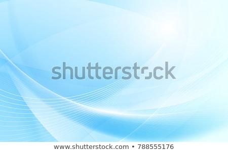 ストックフォト: 抽象的な · ベクトル · 青 · 波状の · 行 · パンフレット