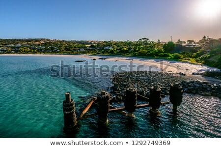 кенгуру острове побережье Южная Австралия пляж морем Сток-фото © dirkr