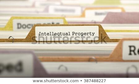 Intellectual Property on Business Folder in Catalog. Stock photo © tashatuvango