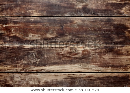 hipster set on wooden table stock photo © adam121
