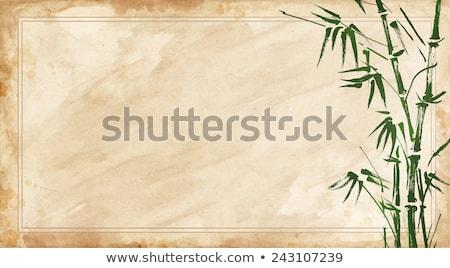 carta · bambù · rami · natura · design - foto d'archivio © rufous