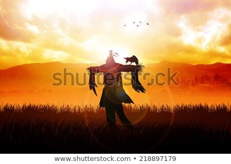 vogelverschrikker · veld · groenten · hemel · man · tuin - stockfoto © is2