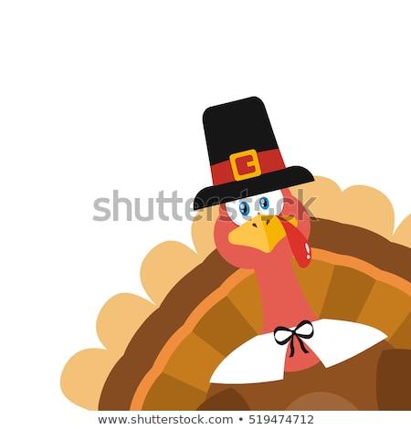 Action de grâces Turquie oiseau mascotte dessinée personnage coin Photo stock © hittoon