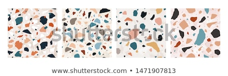 Skał minerały kolekcja plakat kamienie Zdjęcia stock © robuart