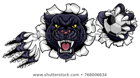 Black Panther Holding Soccer Ball Football Mascot Stock photo © Krisdog