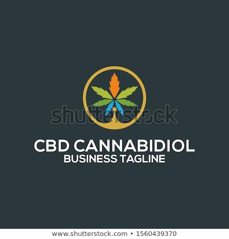 Marijuana illustrazione foglia campo medicina divertente Foto d'archivio © adrenalina