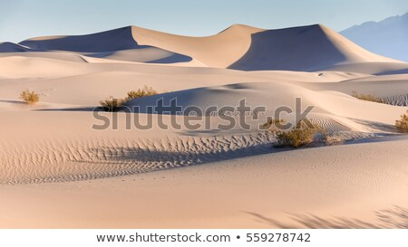 stovepipe wells sand dunes death valley national park californ stock photo © phbcz
