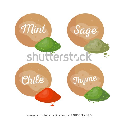 Sage Poster Text and Powder Vector Illustration Stock photo © robuart