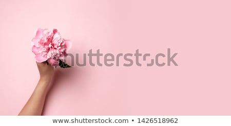 female uterus abstract background stock photo © tefi