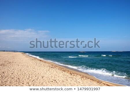 Nature scene with ocean at daytime Stock photo © colematt