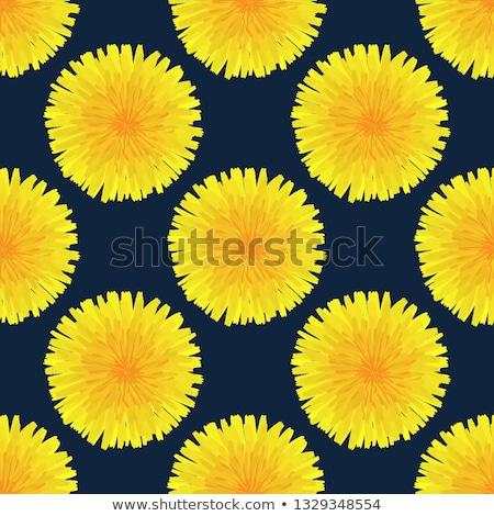 цветочный · рисованной · желтый · голову · одуванчик - Сток-фото © user_10144511