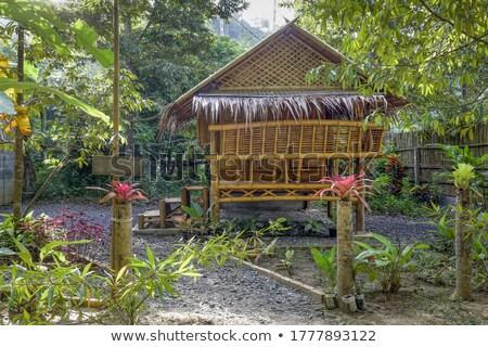 Bungalow bois maison maison fond art Photo stock © colematt