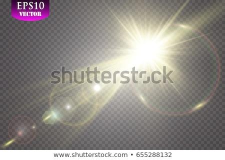 Foto stock: Vector · sol · luz · especial · efecto
