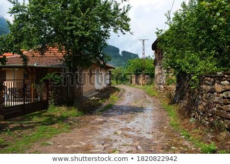 Antigua casa montana Serbia Europa tradicional nuevos Foto stock © simazoran